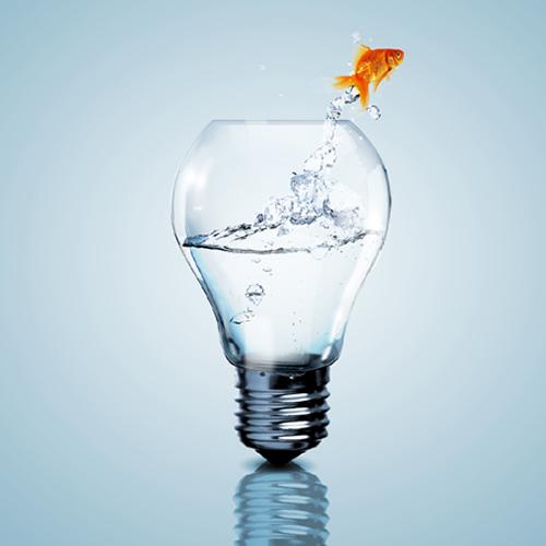 Novas ideias de negócio para 2015